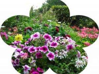 Date limite - Dépot des dossiers pour le concours de Maisons fleuries