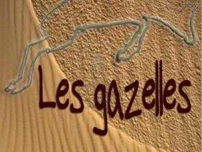 Les Gazelles Ateliers et Spectacles